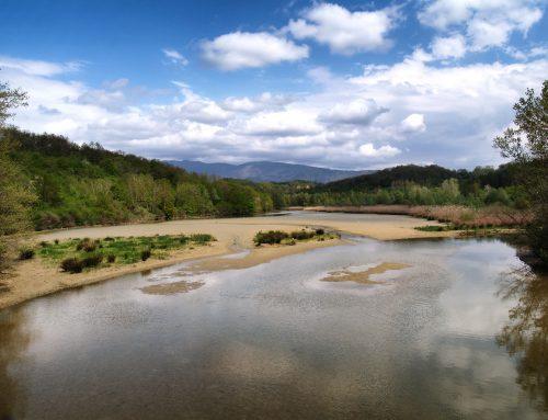Parchi naturali vicino Arezzo